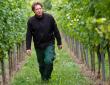 Manuel Lutz - mit freundlicher Genehmigung des Weingutes Lutz